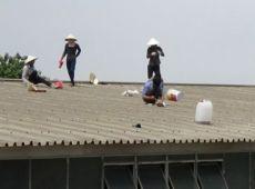 Hướng dẫn bạn cách chống thấm dột mái tôn   Sửa nhà xưởng